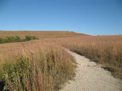 what is a prairie images