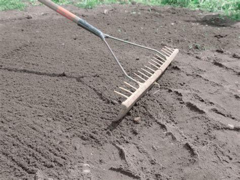 Pflege Rollrasen Nach Verlegen 4207 by Rollrasen Im Garten Ausrollen Tipps Sowie Vor Nachteile