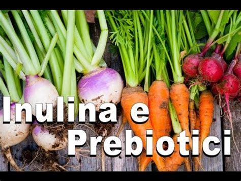 alimenti simbiotici probiotici e fermenti lattici doovi