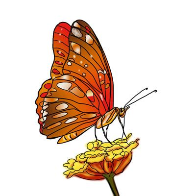 free downloadable clipart free butterfly clipart the cliparts