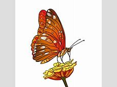 Butterfly Pictures: The LARGEST Free Butterfly Picture ... Free Clipart Downloads Butterflies