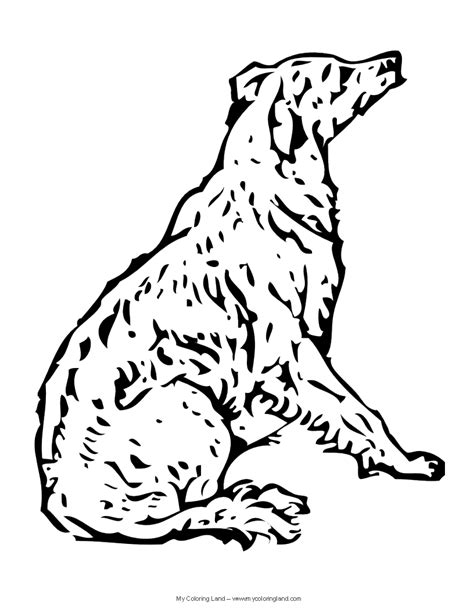 coloring pages of realistic dogs free realistic coloring pages
