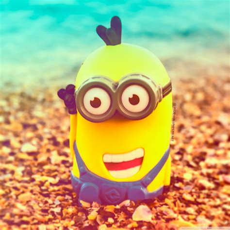 wallpaper minion for android hd minion wallpaper for android wallpapersafari