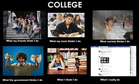 What I Actually Do Meme - the truth revealed in hilarious what i really do meme