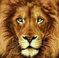 Lion Print by Lion Digital Art By Karen Kutoloski