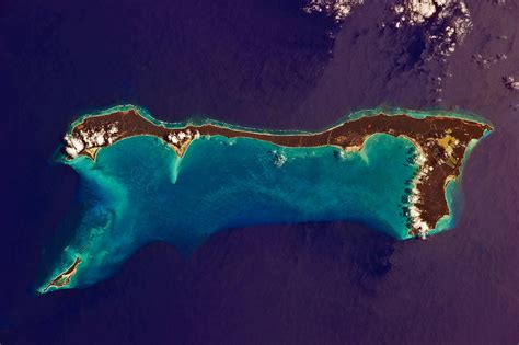 cat island cat island bahamas wikipedia