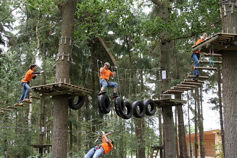 Hall Tree by Forest4fun High Ropes Park Nearby Activities Places