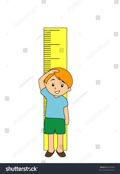 picture height boy measuring height vector stock vector 8525509