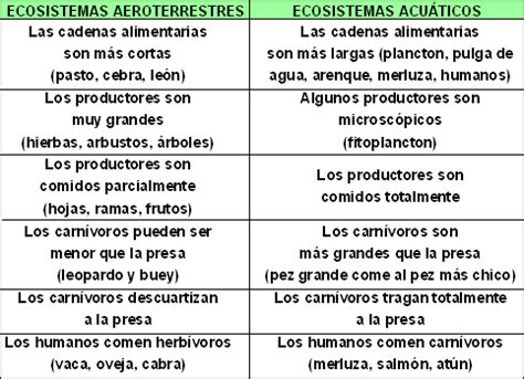 cadena alimenticia acuatica y terrestre wikipedia ciencias biologicas cadenas alimentarias