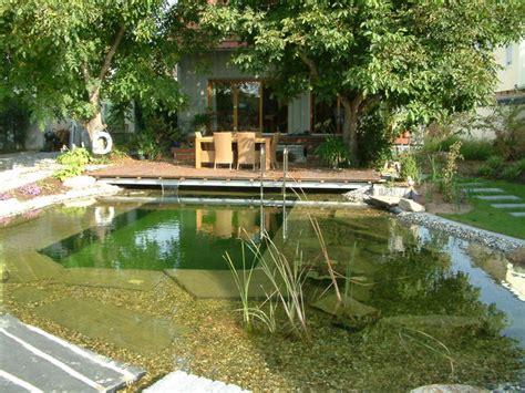 schwimmteich garten schwimmteich matthias lutz der garten