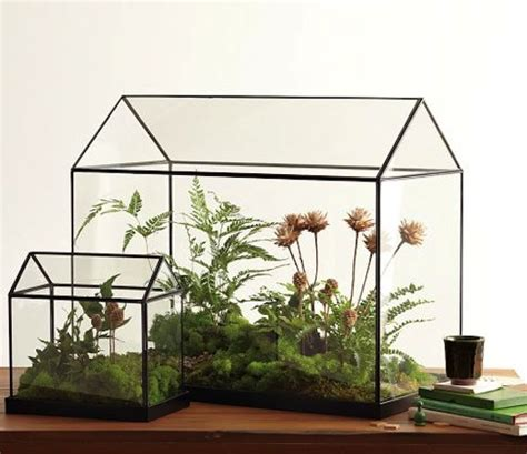 indoor greenhouse mini greenhouses and we play diy for kids