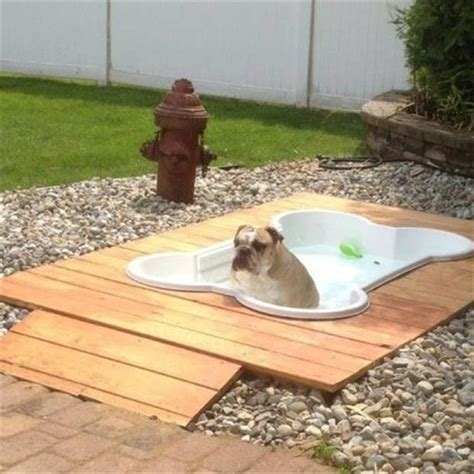 backyard ideas for dogs fun outdoor dog pool garden ideas dump a day