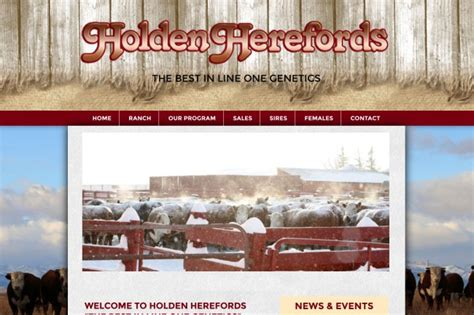 new redesigned and responsive site for holden herefords