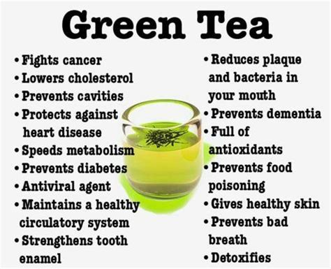 Why should we drink green tea the health and weight loss
