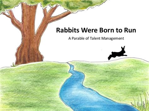 The Rabbit Learns To Climb rabbits were born to run