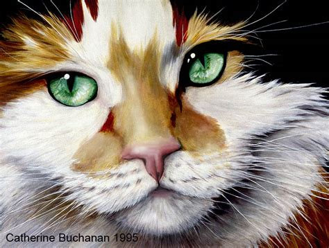 painting cats catherine buchanan animal paintings