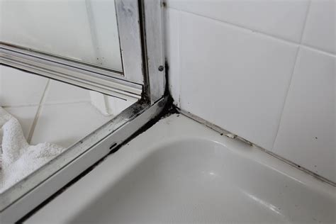 Clean Mold From Shower by Our Home From Scratch
