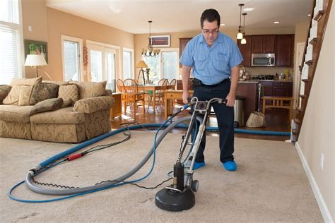 vidox upholstery mark cleaning carpeting yelp