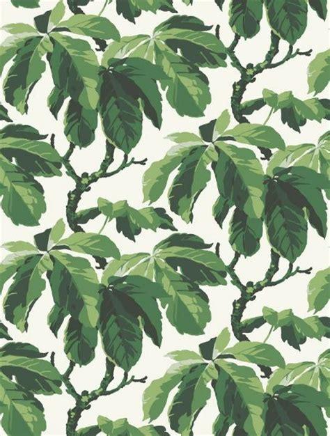 pattern bush leaf green fig leaf tree wallpaper pattern bor 229 stapeter oxford