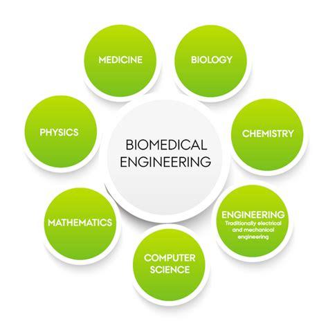 Bioengineering Adalah | biomedical engineering