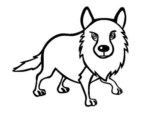 dibujo de golondrina para colorear dibujos de animales dibujo de coyote adulto para colorear dibujos de
