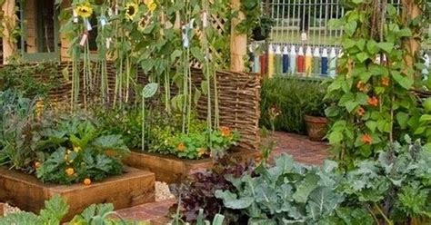 Intensive Gardening Grow More Food In Less Space With Intensive Vegetable Gardening