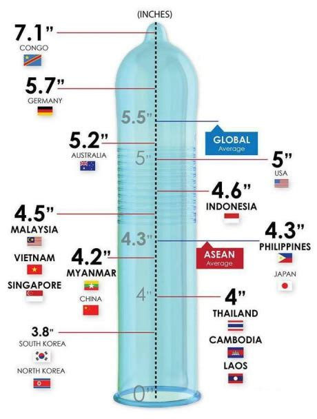 what is the average size of a 2 bedroom apartment new condom sizes around the world page 2 of 2 likesgag