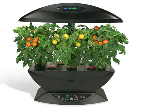 hydroponics are inhabitat green design innovation - Indoor Tomato Garden