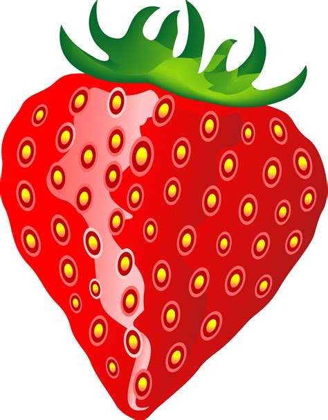 strawberry clipart strawberry clip art border clipart best