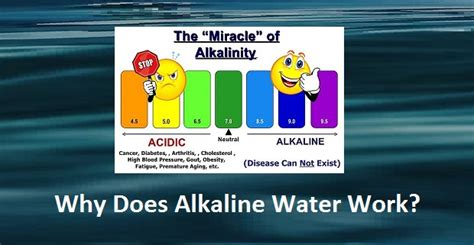 Does Alkaline Water Help Detox by Can Kangen Water Cure Gout Best Way To Reduce High Uric