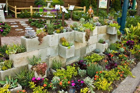 50 Ways Of Creating An Enchanted Succulent Garden In Your How To Make A Succulent Wall Garden