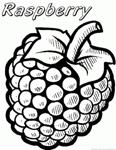 free coloring pages of raspberry