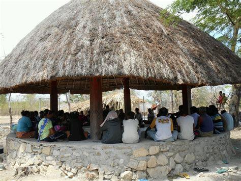 Bibit Jagung Nusantara sambut musim tanam komunitas adat pubabu besipae siapkah