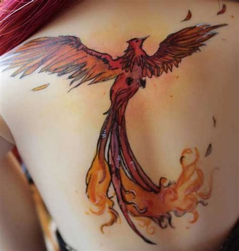 tattoo phoenix tumblr 25 beste phoenix tattoo designs tattoos ideen
