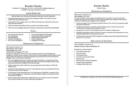 Resume Advice For Sales Sales Director Resume Sle