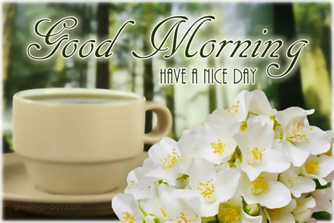 good morning spring pictures ecards  wishes