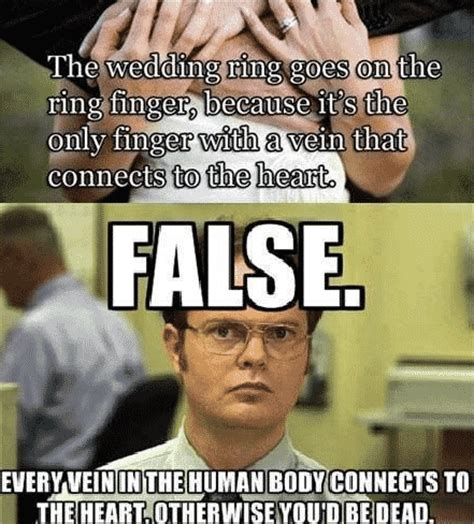 Dwight Schrute Memes - wedding venues miami top 10 wedding memes
