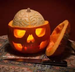 best 25 unique pumpkin carving ideas ideas on pinterest