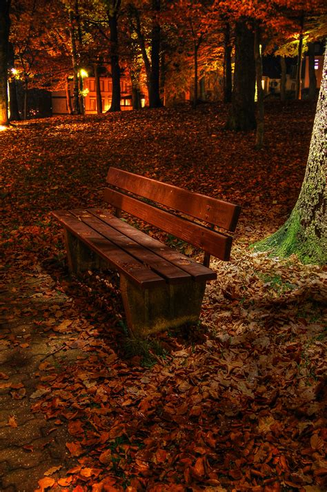 bench at night file park bench at night hdr l 252 denscheid germany jpg
