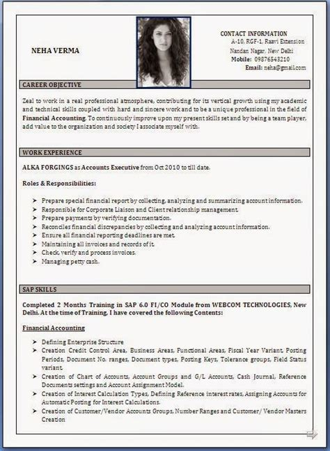 Best Job Resume Format Pdf by Best Cv Samples Download