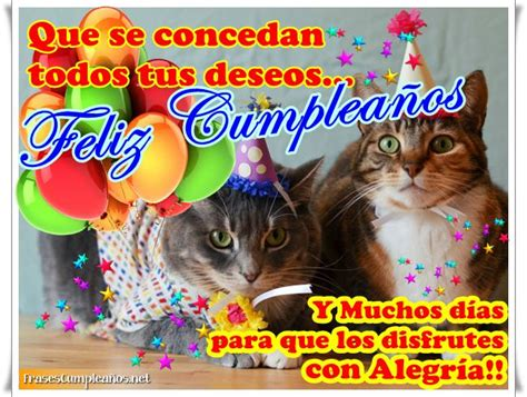 imagenes de gatos que digan feliz cumpleaños tarjetas de feliz cumplea 241 os con gatitos imagui