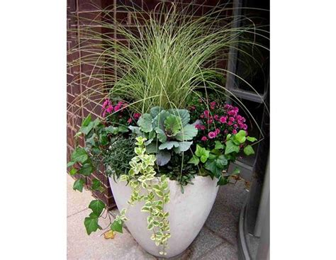 Flower Arrangements For Outside Planters by 25 Best Ideas About Fall Flower Pots On Fall