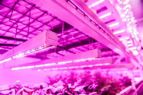 philips green sense farms usher   era  indoor