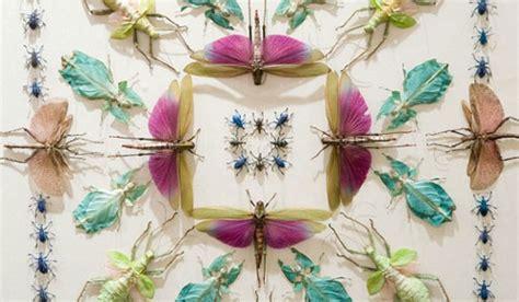 come sterminare le formiche in casa insetti artistici fiori e foglie
