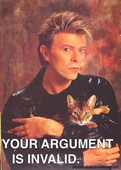 David Bowie Meme - david bowie cat meme
