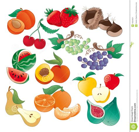 frutti free z price fruit illustration stock image image 10524521