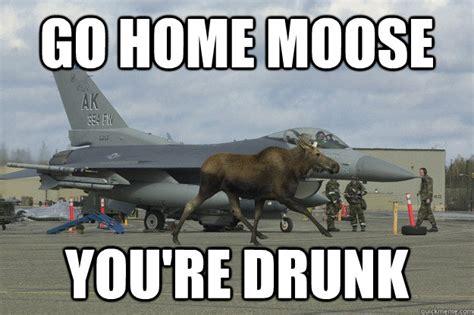 Moose Meme - drunk moose meme