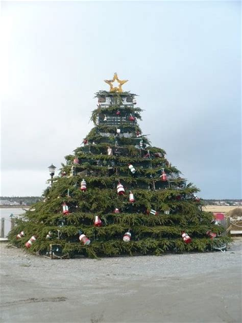 lobster pot christmas tree nova scotia christmas around