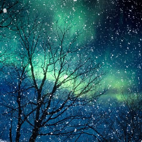 of the snows light nature photography winter photography northern lights snow
