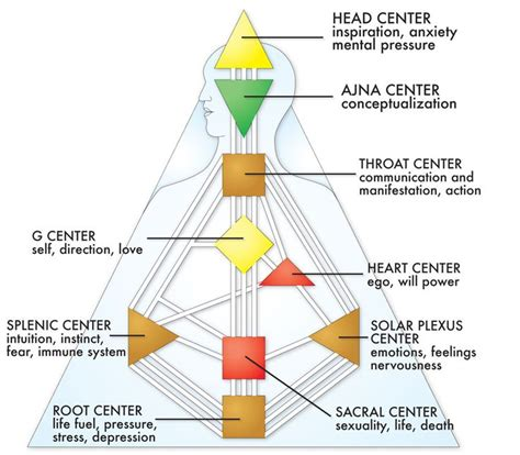 human design uk free chart the nine centersthe nine centers are represented by nine